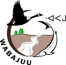 Logo_Waapajuu